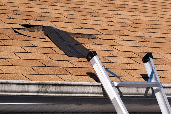 Let the Experts Handle Your Roofing Needs